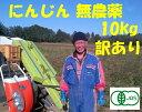 有機 にんじん 無農薬10kg有機 オーガニック 野菜訳あり 送料無料 ニンジン 無農薬ジュース用 10kg無農薬 にんじん 人参 無農薬 規格外品 有機JAS100%にんじん有機栽培20年以上の実績10キロ