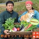送料無料!『農家直送!南房総の豊かな土壌で育った野菜セット(6〜9品目)』1〜2人様向け