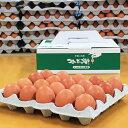 【採れたて農場直送!】つまんでご卵 大玉20個 化粧箱手提げ型