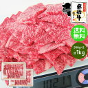 《メガ盛り》 飛騨牛 牛カルビ 焼肉用 500g×2パック(合計1kg) 送料無料1キロ 1kg カルビ 焼肉 BBQ バーベキュー 食材 ブランド 和牛 牛肉 お取り寄せグルメ ギガ盛り テラ盛り