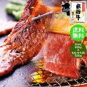 ●ついに!メガ盛りにハーフ&ハーフ 【送料無料】飛騨牛 カルビ500g&もも・かた(赤身)焼肉用500g やきにく BBQ バーベキューセット 食材/焼肉/材料/焼肉/セット/焼肉/