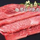 黒毛和牛 焼肉 常陸牛 A5 ちょい厚切り 肩ロース 230g 焼肉用 焼き肉セット 肉 プレゼント お祝い 内祝い 肉