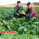 矢口さんちの旬の野菜セット