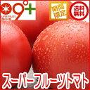 フルーツトマト とまと「スーパーフルーツトマト小箱(8〜12玉 約800g)糖度9度以上」トマト 高糖度 送料無料 茨城県 ギフト プレゼント フルーツ 産地直送