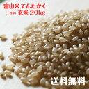 富山県産てんたかく玄米(一等米)20kg【30年度産】【送料無料】