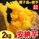 安納芋M/L(2kg)種子島産 安納芋 種子島 安納いも あんのう サツマイモ さつま芋 蜜 芋 食品 野菜 きのこ サツマイモ 安納芋 送料無料