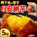 プチ安納芋(5kg)種子島産 安納いも さつまいも さつま芋 蜜 芋 あんのう いも 食品 野菜 きのこ サツマイモ 種子島 小玉 2S 3S 訳あり 安納芋 送料無料