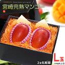 宮崎マンゴー(L×2玉/約600g)宮崎産 秀品 ギフト 贈答 国産 マンゴー 完熟 送料無料
