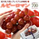 ルビーロマン(700g前後/1房)石川産 秀品 ぶどう 種無し 食品 フルーツ 果物 ブドウ ギフト 送料無料