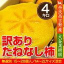 送料無料 たねなし柿 わけあり 訳あり 種なし奈良西吉野産わけありたねなし柿(15〜20個入り・約4kg)【サイズM〜2L】