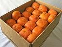 【奈良西吉野産わけありたねなし柿(M〜2L(200g以上) 15〜20個入り・約4kg)】送料無料