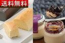 【送料無料】ダブルチーズケーキベイクドチーズケーキとレアチーズケーキ食べ比べセット