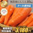 \クーポン配布中!/【訳あり】国産 無農薬にんじん ジュース用 10kg【送料無料】【クール便】