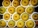 【鳥取の旬のフルーツ「初秋」】新甘泉(しんかんせん)梨5kg箱【店長おすすめ旬の梨】8月下旬より順次発送予定【旬の果物・フルーツ・くだもの】【なし 取り寄せ】【梨 取り寄せ】