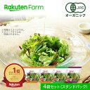 【割引クーポンあり】オーガニック野菜 3種のサラダ 80g×4個 国産