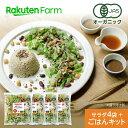 【割引クーポンあり】ごはんキット付 100%オーガニック 野菜サラダ 100g x 4袋【ミックス】