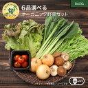 【390円OFFクーポン配布中】6品選べるオーガニック野菜セット (20種から選択)