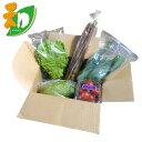 和郷園 野菜ボックス5品目 野菜セット 野菜BOX 産地直送 農家厳選(代引き不可)【送料無料】