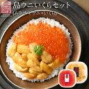 うに ウニ 生キタムラサキウニ 90g+昆布だしイクラ 60g セット日本最北の島 北海道 礼文・利尻島産雲丹 無添加 塩水パック ギフト グルメ 食品 贈り物 還暦祝い 塩水うに 生うに