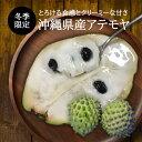 【送料無料】沖縄県産アテモヤ2Kg(8玉〜14玉) 森のアイスクリーム カスタ-ドアップル
