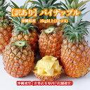 【送料無料・即発送可】沖縄県産【訳あり】パイナップル(パインアップル) 2kg以上(2〜3玉)パイン パイナップル 沖縄 フルーツ ギフト 贈り物対応可