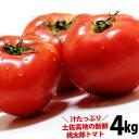 トマト・送料無料・桃太郎・とまと・約4kg・高知愛媛産・トマト・とまと沖縄県と北海道と離島は配送不可!