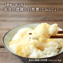 自然薯 【静岡牧の原】 長谷川農園 の自然薯(じねんじょ)1kg