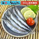 訳あり 子持ちシシャモ一夜干し たっぷり850g ししゃも 柳葉魚 干物【クーポンで580円OFF】