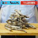 訳あり 子持ちシシャモ一夜干し たっぷり700g ししゃも 柳葉魚 干物【クーポンで580円OFF】
