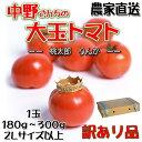 訳あり 大玉 トマト 中野さんちの大きい とまと です 約4kg 16個か20個入り 産地直送 農家直送