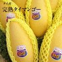 【完熟タイマンゴー】7玉入り箱送料無料ク-ル便