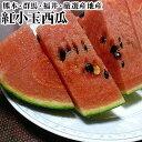 熊本・群馬・福井・厳選産地産紅小玉西瓜1玉