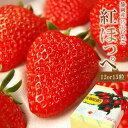 ラッピング付き♪静岡産紅ほっぺ いちご特大サイズ(12or15粒入)【お誕生日 お祝 内祝 御礼】