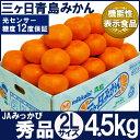 三ケ日青島みかん【秀品】2Lサイズ4.5キロ(28個前後)(三ヶ日みかん)