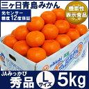 三ケ日青島みかん【秀品】Lサイズ5キロ(38個前後)(三ヶ日みかん)