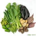 【和気健康農業研究会】江見さんの季節の野菜詰合せ7種 西日本 岡山県 有機JAS 自然農法