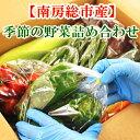 【送料無料】南房総産 季節の野菜 詰め合わせ 採れたて 新鮮 野菜 【グリーンアース】