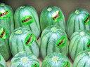 北海カンロ(甘露)Lサイズ4kg(8玉前後)送料無料 冷蔵配送北海道産 かんろ アジウリ マクワウリ出荷期間 7月上旬〜8月中旬【沖縄県、一部離島は別途追加送料500円を加算させていただきます。】
