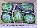 北海道産 マダーボールすいか(秀・約2Kg) ×5玉送料無料出荷期間 7月上旬〜8月中旬