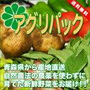 [送料無料]アグリパック(青森 アグリメイト南郷)無農薬野菜セット 自然農法野菜詰め合わせパック・送料無料・産地直送