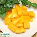 冷凍マンゴー 2kg(200g×10袋)(沖縄県 沖縄マンゴー生産研究会) 自然農法 マンゴー 送料無料