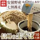 信州の生そば 10人前 本わさび丸ごと1本・信州天然のうまい水・そばぶるまい特製蕎麦つゆ 付