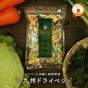 国産 乾燥野菜ミックス 九州ドライベジ100g×1袋 (戻して約500g) 九州産 ゆうパケット(ポスト投函)・代引不可 【出荷目安:ご注文後1〜2週間】