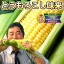 とうもろこし 北海道産 味来(みらい)約4kg(11本〜15本) 送料無料 朝採りトウモロコシ【8月下旬頃より順次出荷予定】