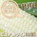 北海道富良野産 激甘トウモロコシ ピュアホワイト 10本【送料無料】 【10P03Dec16】