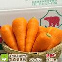 にんじん 送料無料 北海道 富良野産 低農薬栽培 訳あり 洗い 人参 10kg(SサイズからLサイズ込)【10P03Dec16】