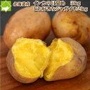 北海道産じゃがいも インカのめざめ3kgとお好きなジャガイモ2kg 合計5kg 送料無料 別途送料が発生する地域あり