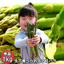 アスパラガス 予約販売 北海道 富良野産 送料無料 グリーン スイートアスパラ 秀品 1kg S〜Lサイズ込【生】で食べられる 別途送料が発生する地域あり
