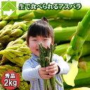 アスパラガス グリーン 秀品 SからLサイズ混合 2kg詰め 北海道富良野産 送料無料