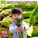 グリーンアスパラガス 北海道富良野産 1.5kg入り 送料無料 別途送料のかかる地域あり 2019年春ご予約販売